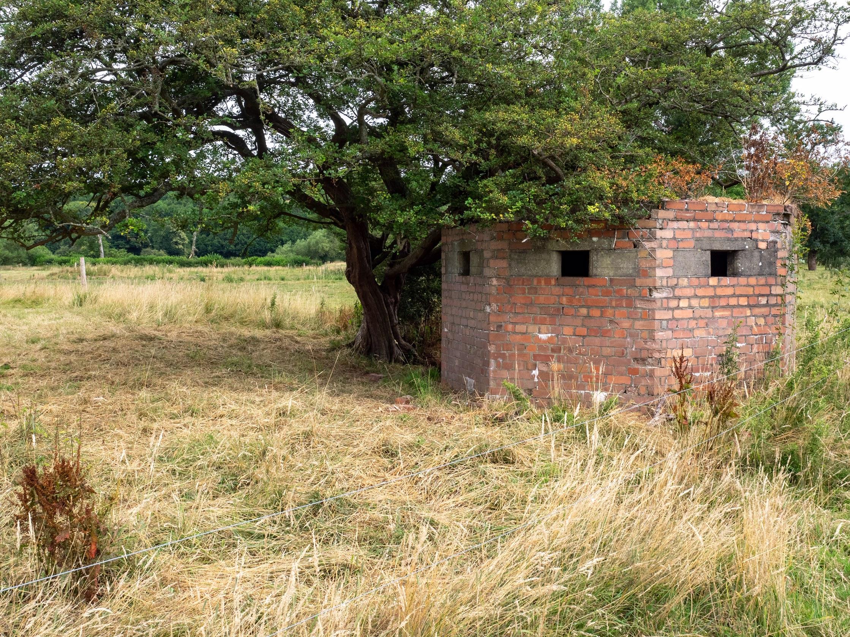 Pillbox on Usk meadows at Scethrog