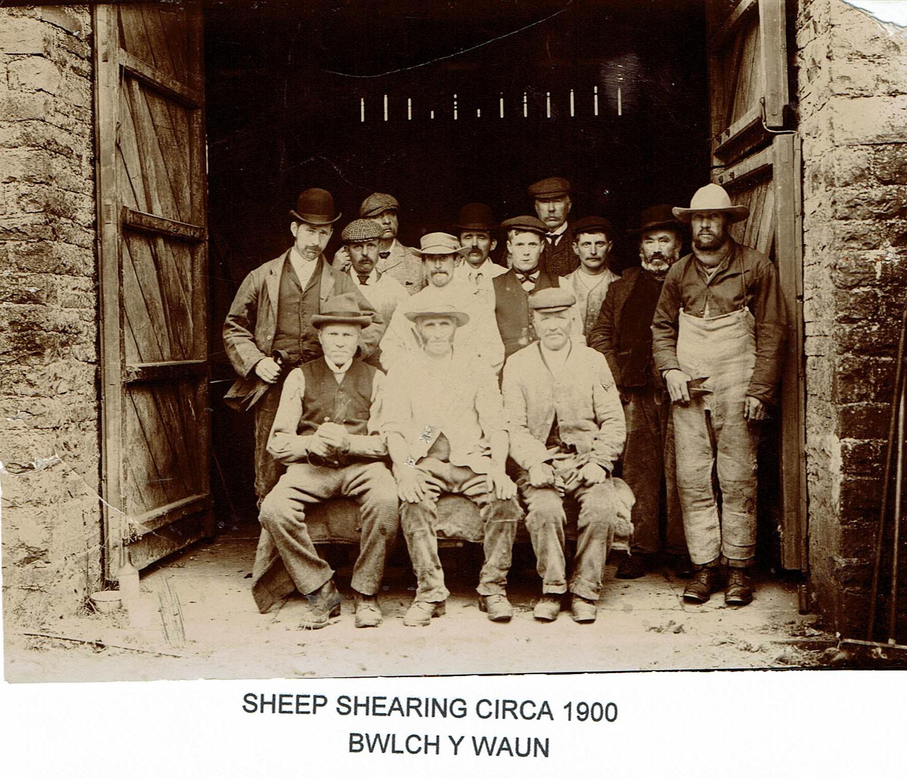 Shearting at Bwlchwaun C1900